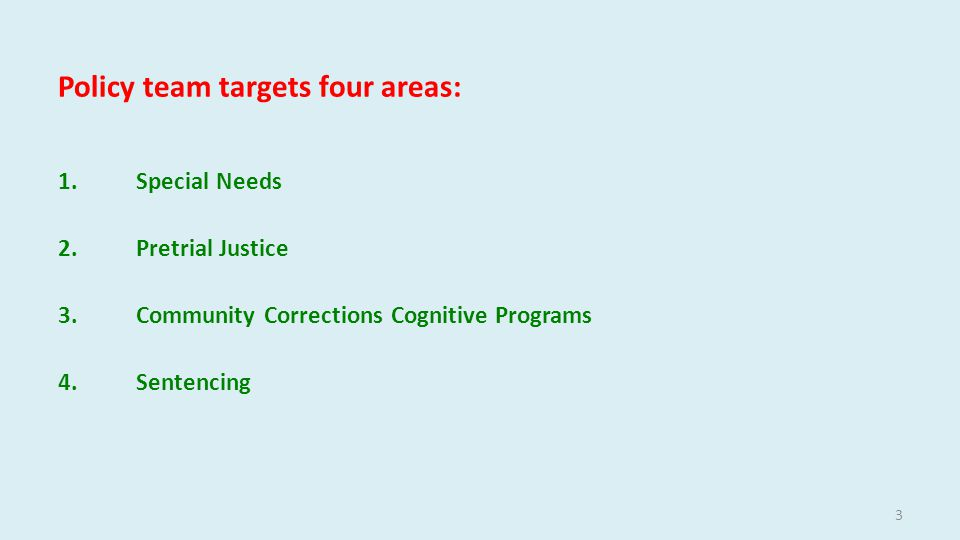 Policy team targets four areas: 1.Special Needs 2.Pretrial Justice 3.Community Corrections Cognitive Programs 4.Sentencing 3