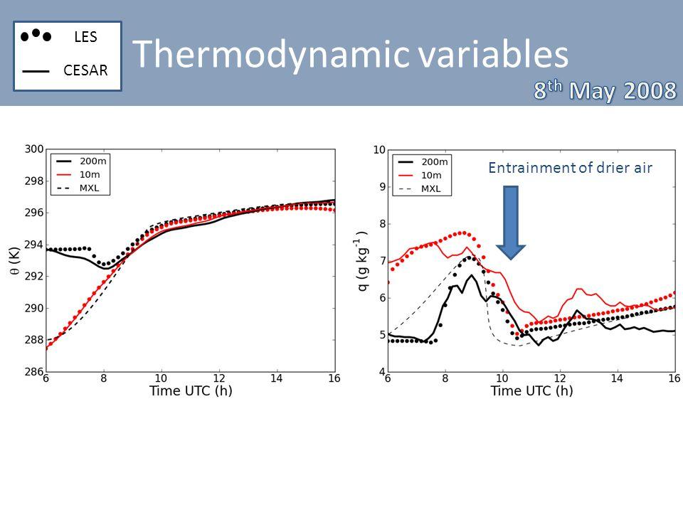 Thermodynamic variables LES CESAR Entrainment of drier air