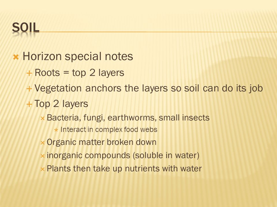  Horizon special notes  Roots = top 2 layers  Vegetation anchors the layers so soil can do its job  Top 2 layers  Bacteria, fungi, earthworms, small insects  Interact in complex food webs  Organic matter broken down  inorganic compounds (soluble in water)  Plants then take up nutrients with water