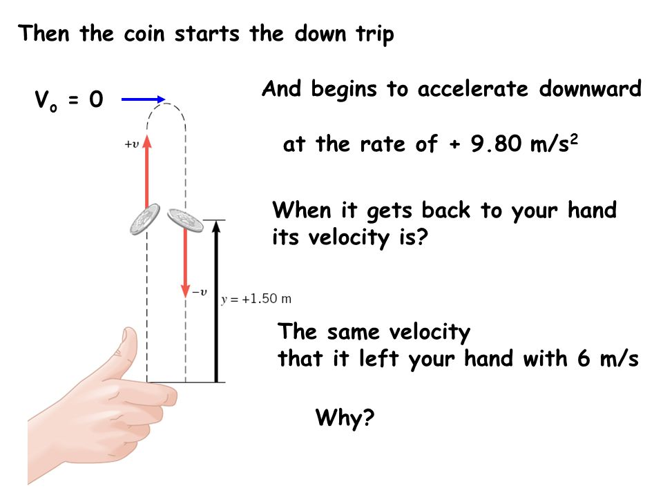 V o = 0 Then the coin starts the down trip And begins to accelerate downward at the rate of + 9.80 m/s 2 When it gets back to your hand its velocity is.