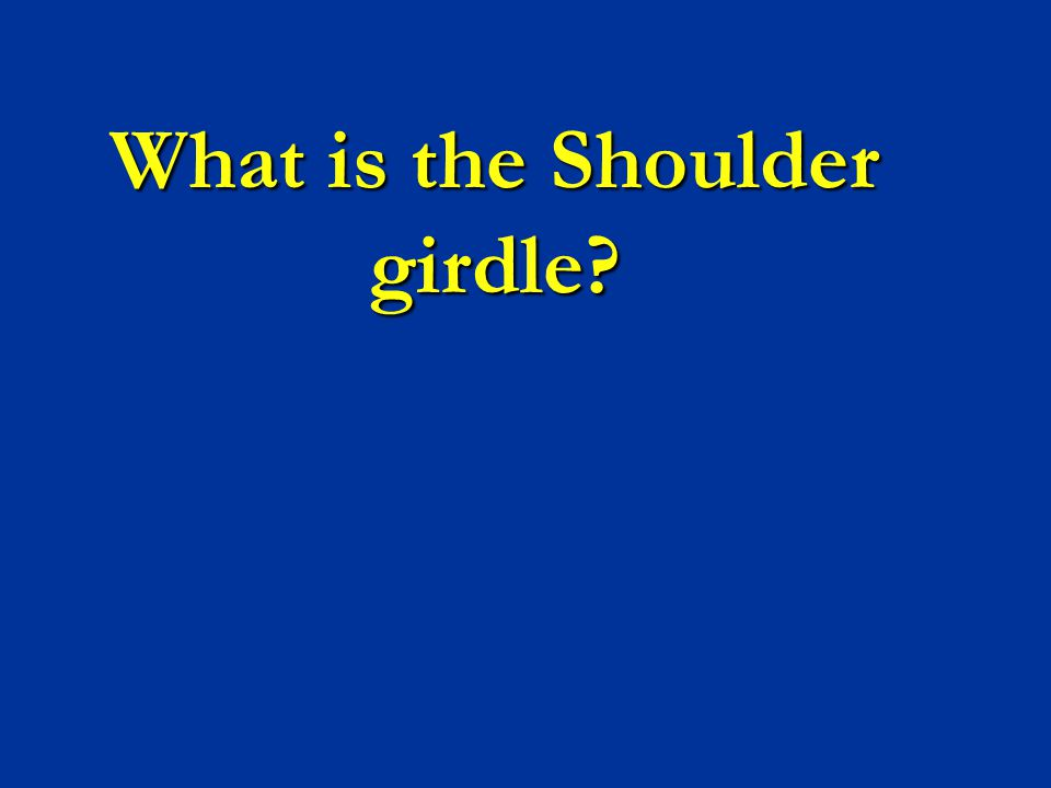 What is the Shoulder girdle?