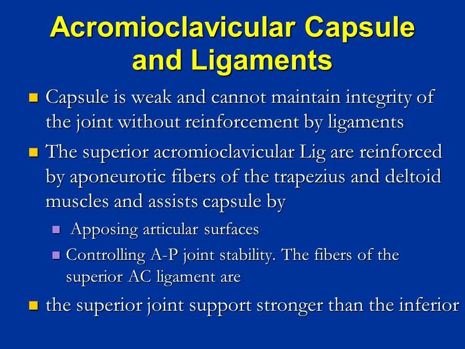 Acromioclavicular Capsule and Ligaments Capsule is weak and cannot maintain integrity of the joint without reinforcement by ligaments Capsule is weak