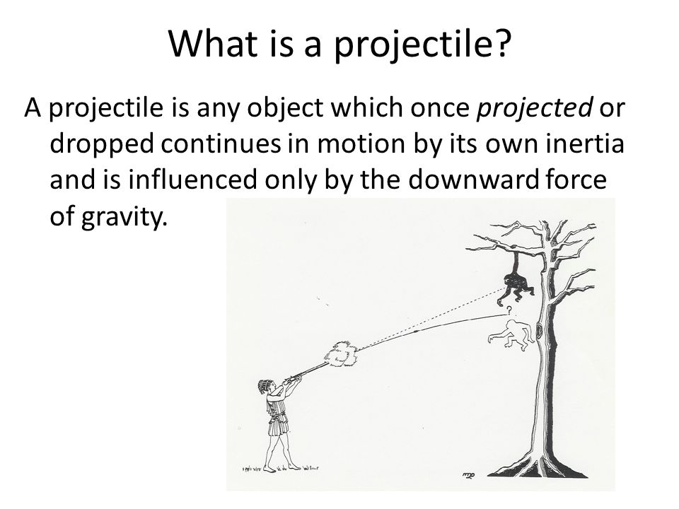 What is a projectile? A projectile is any object which once projected or dropped continues in motion by its own inertia and is influenced only by the