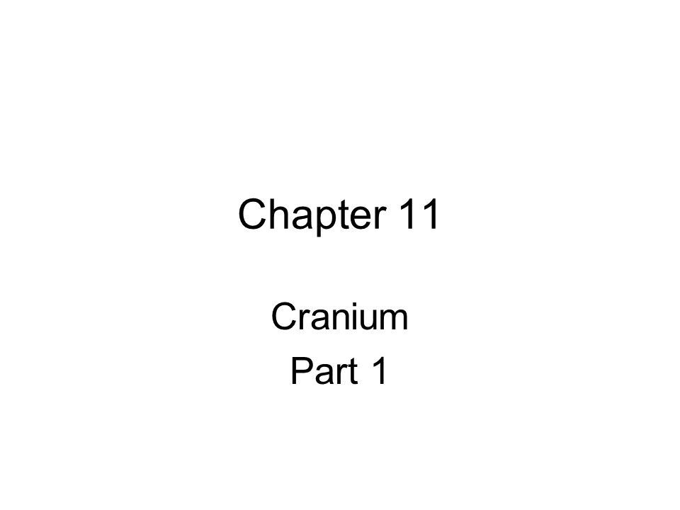Chapter 11 Cranium Part 1