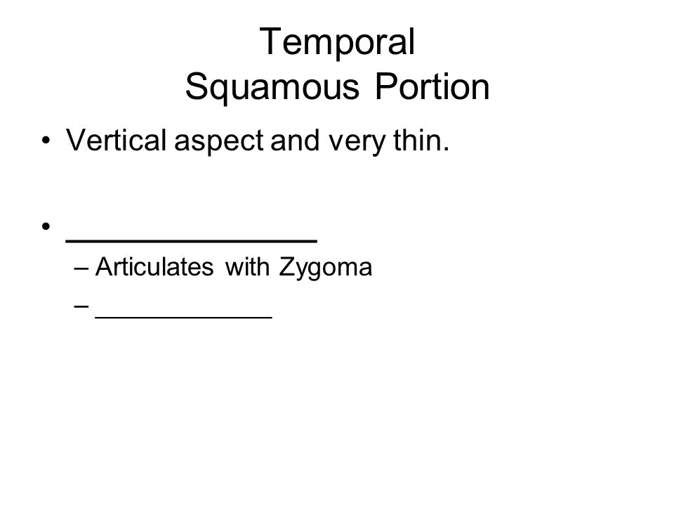 Temporal Squamous Portion Vertical aspect and very thin.
