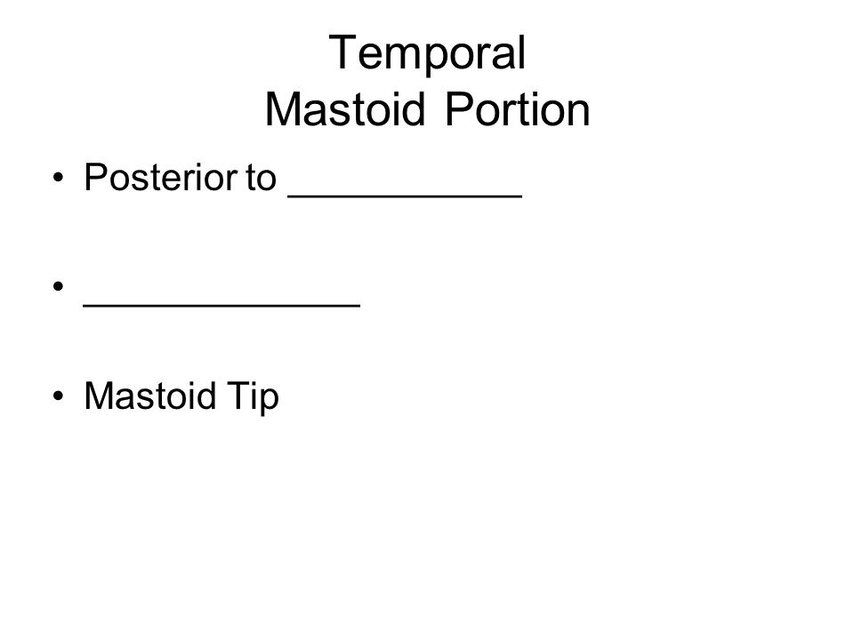 Temporal Mastoid Portion Posterior to ___________ _____________ Mastoid Tip