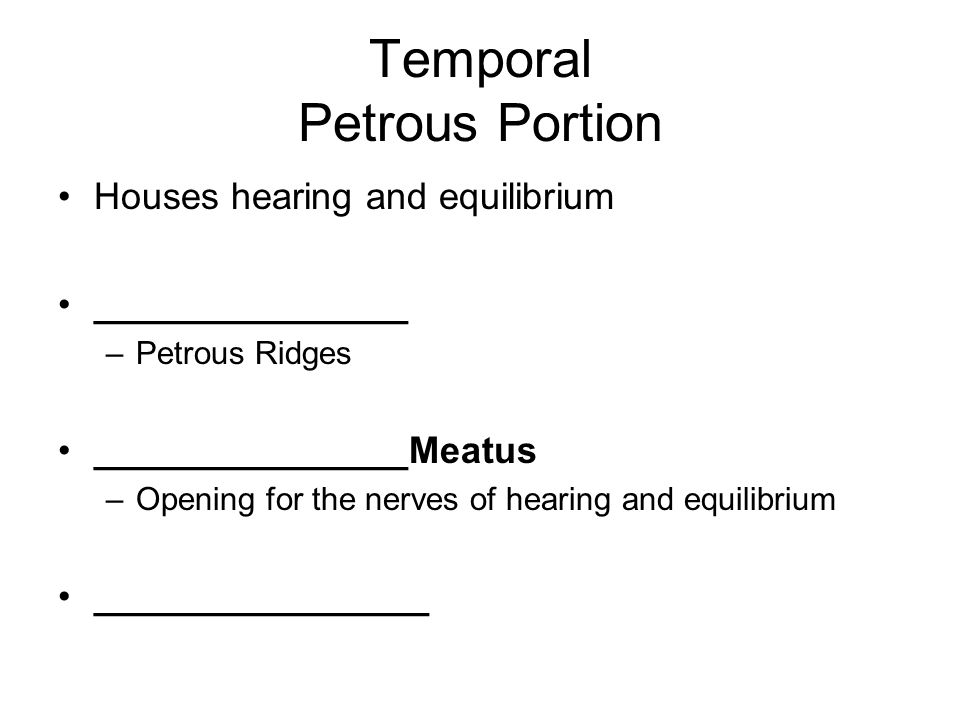 Temporal Petrous Portion Houses hearing and equilibrium _______________ –Petrous Ridges _______________Meatus –Opening for the nerves of hearing and equilibrium ________________