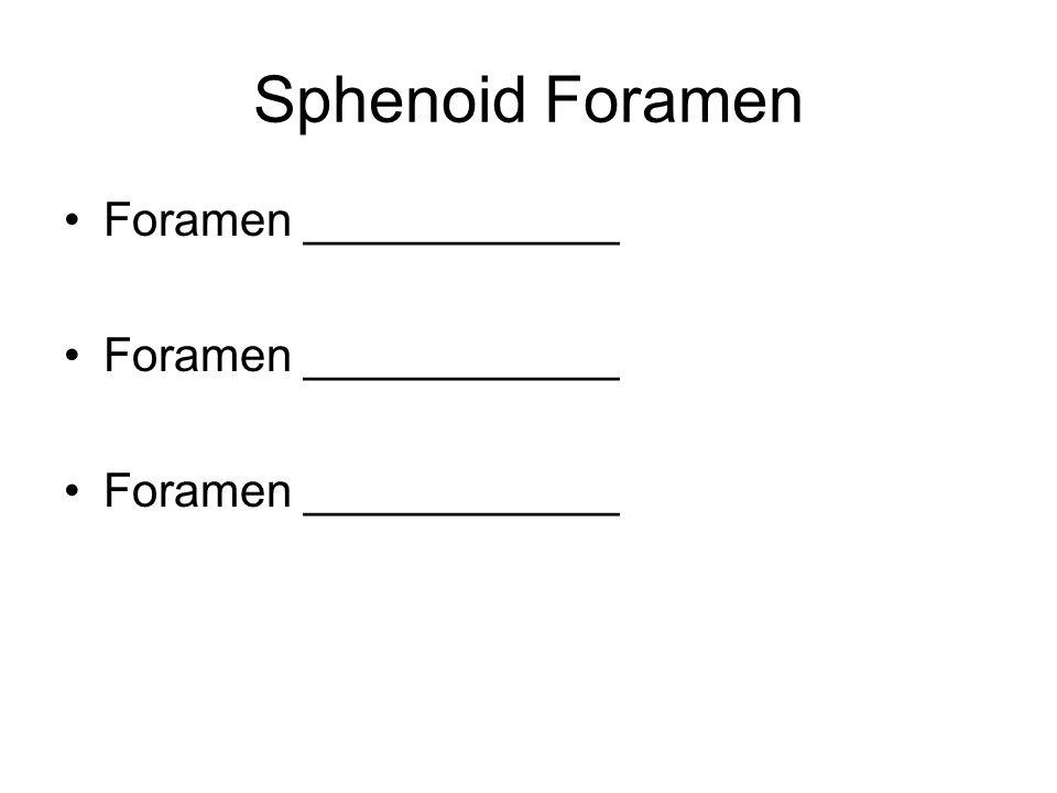Sphenoid Foramen Foramen ____________