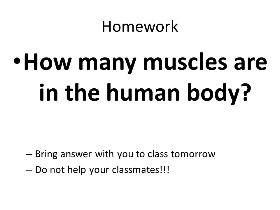how many muscles in the human body – citybeauty, Human body