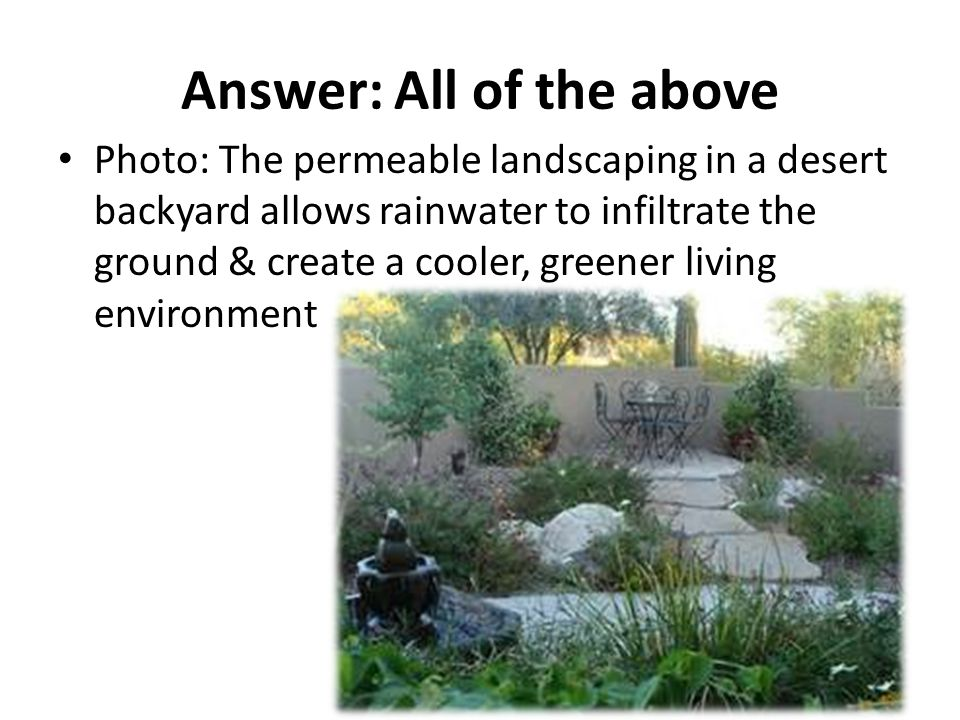 Answer: All of the above Photo: The permeable landscaping in a desert backyard allows rainwater to infiltrate the ground & create a cooler, greener living environment