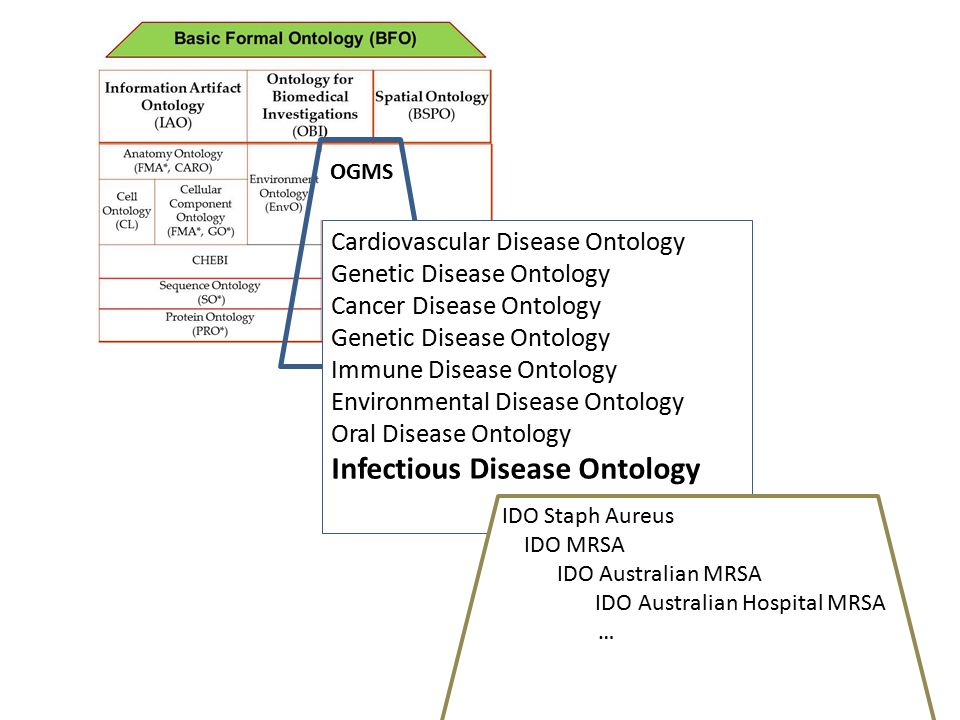 OGMS Cardiovascular Disease Ontology Genetic Disease Ontology Cancer Disease Ontology Genetic Disease Ontology Immune Disease Ontology Environmental Disease Ontology Oral Disease Ontology Infectious Disease Ontology IDO Staph Aureus IDO MRSA IDO Australian MRSA IDO Australian Hospital MRSA …