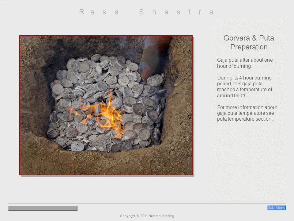 R a s a S h a s t r a Copyright © 2011 Neterapublishing Gorvara & Puta Preparation Gaja puta after about one hour of burning.