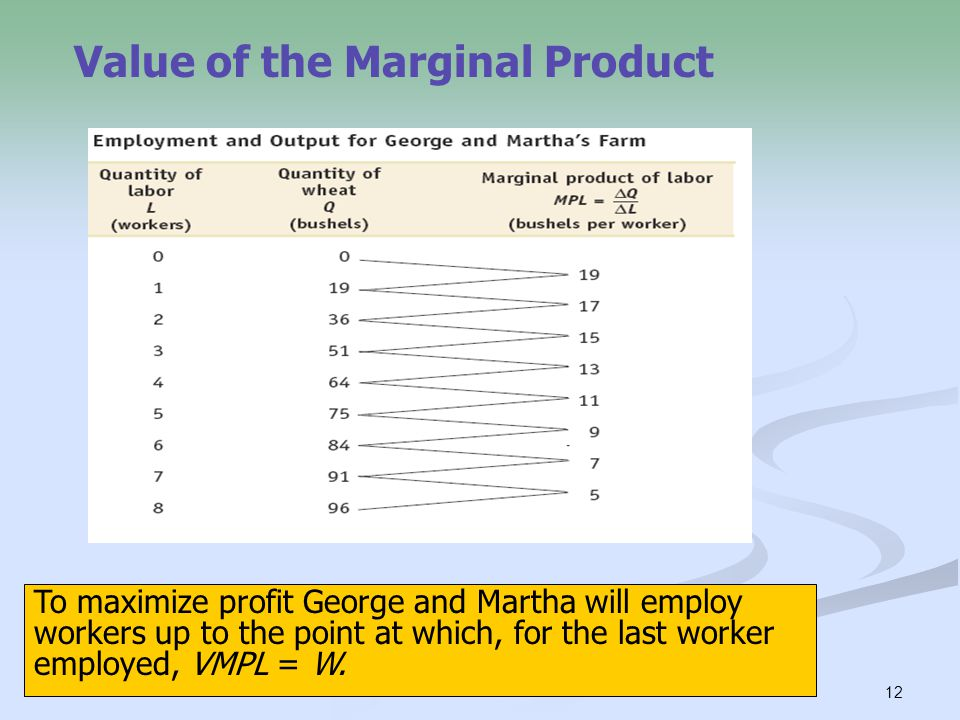 12 Value of the Marginal Product To maximize profit George and Martha will employ workers up to the point at which, for the last worker employed, VMPL