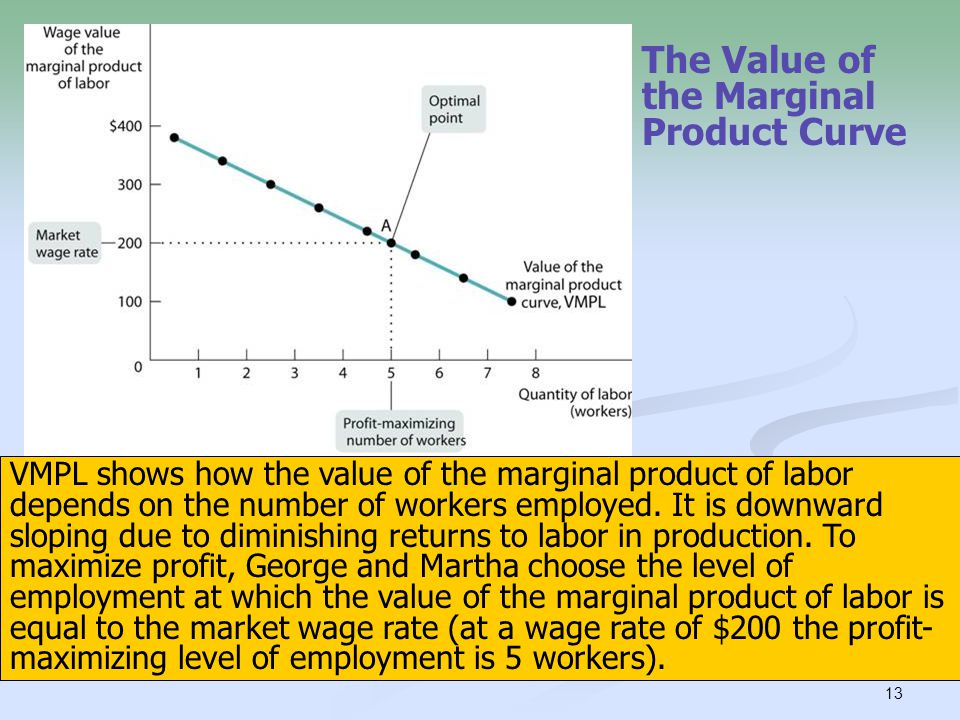 13 The Value of the Marginal Product Curve VMPL shows how the value of the marginal product of labor depends on the number of workers employed. It is