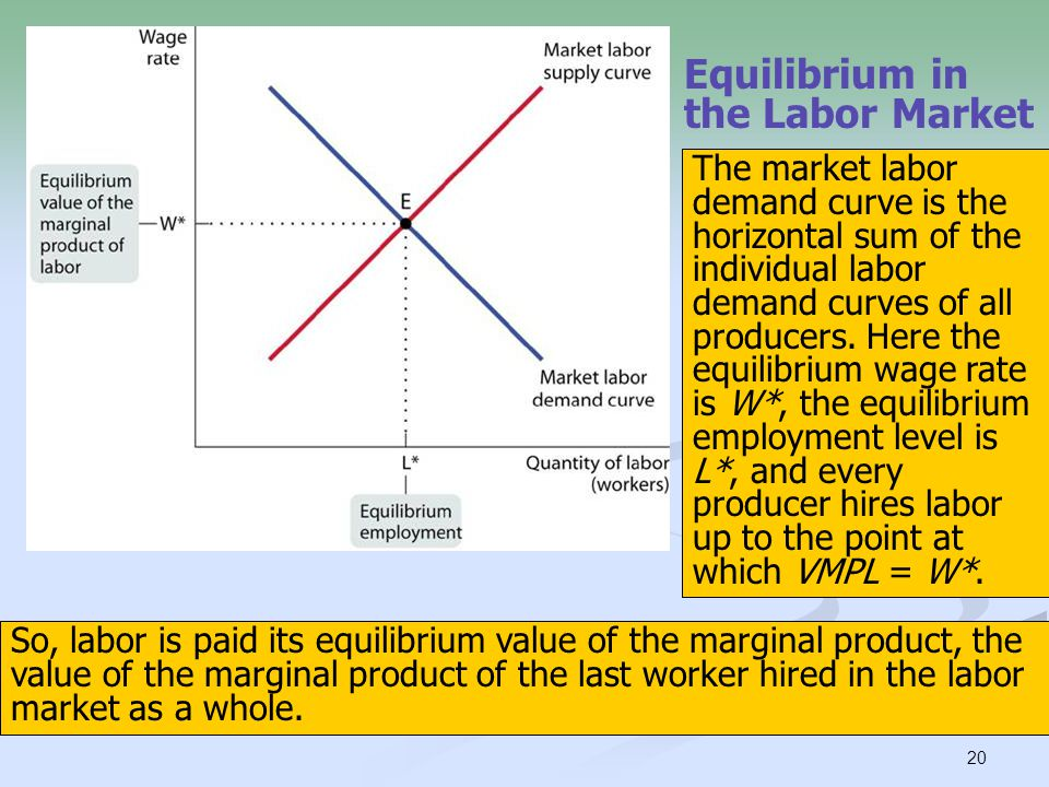 20 Equilibrium in the Labor Market So, labor is paid its equilibrium value of the marginal product, the value of the marginal product of the last work