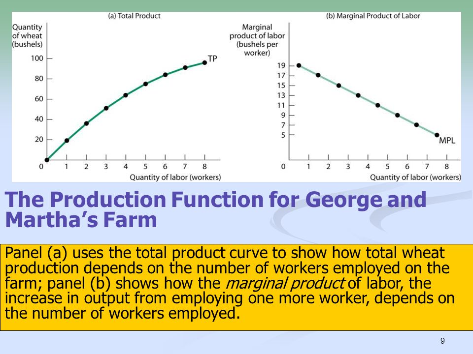 10 What is George and Martha's optimal number of workers.