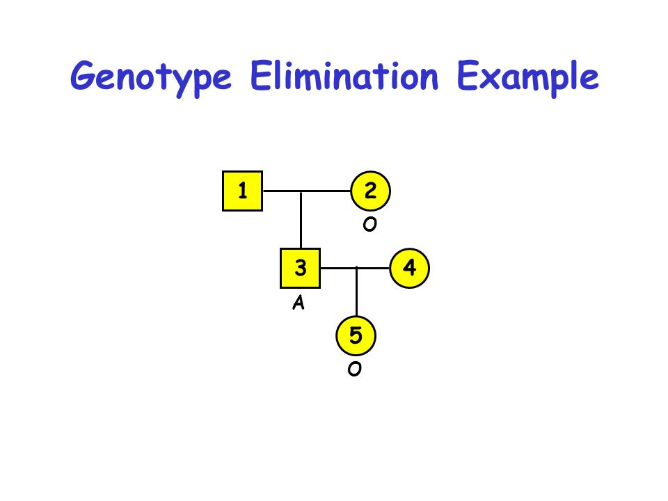 Genotype Elimination Example 1 3 2 4 5 O O A