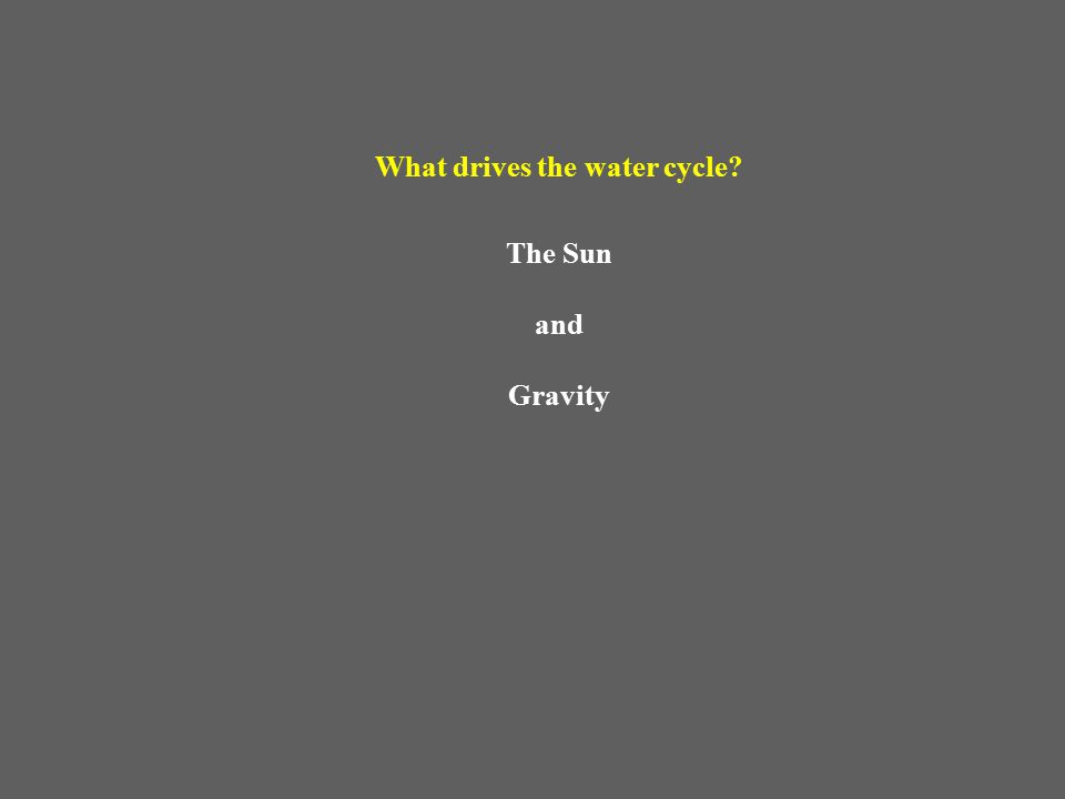 What drives the water cycle The Sun and Gravity