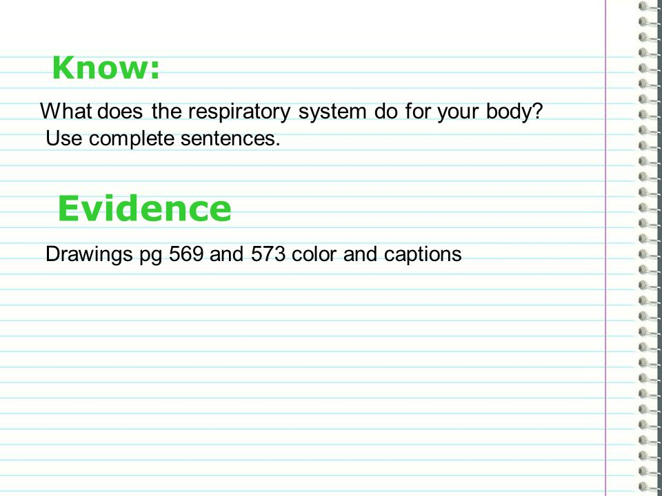 Know: What does the respiratory system do for your body.