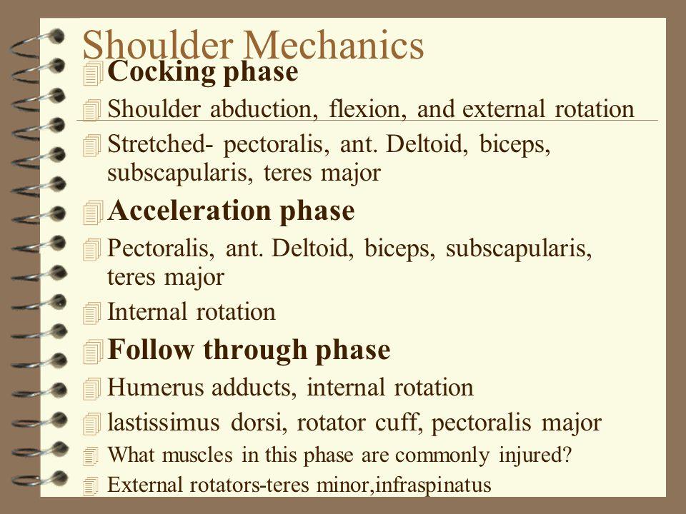 Shoulder Mechanics 4 Cocking phase 4 Shoulder abduction, flexion, and external rotation 4 Stretched- pectoralis, ant.