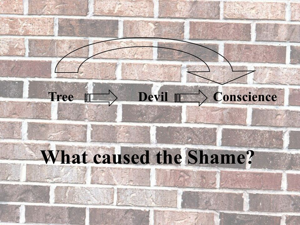 What caused the Shame? TreeConscienceDevil