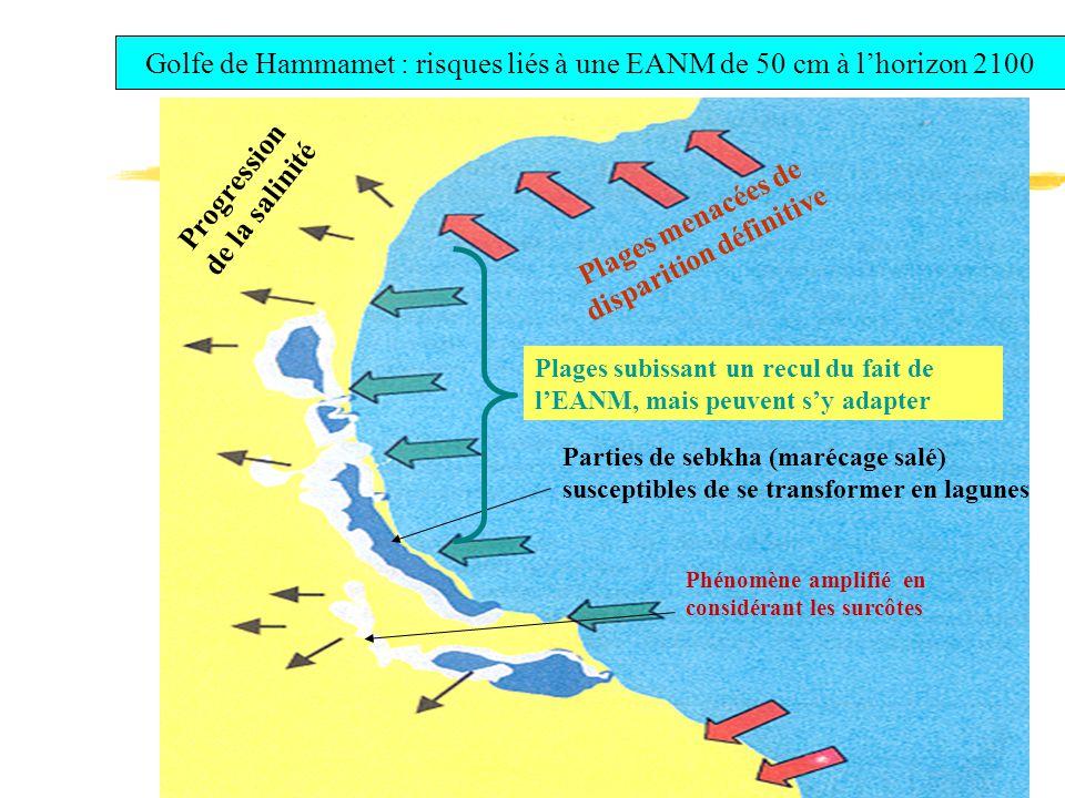 Golfe de Hammamet : risques liés à une EANM de 50 cm à l'horizon 2100 Parties de sebkha (marécage salé) susceptibles de se transformer en lagunes Plages menacées de disparition définitive Plages subissant un recul du fait de l'EANM, mais peuvent s'y adapter Phénomène amplifié en considérant les surcôtes Progression de la salinité