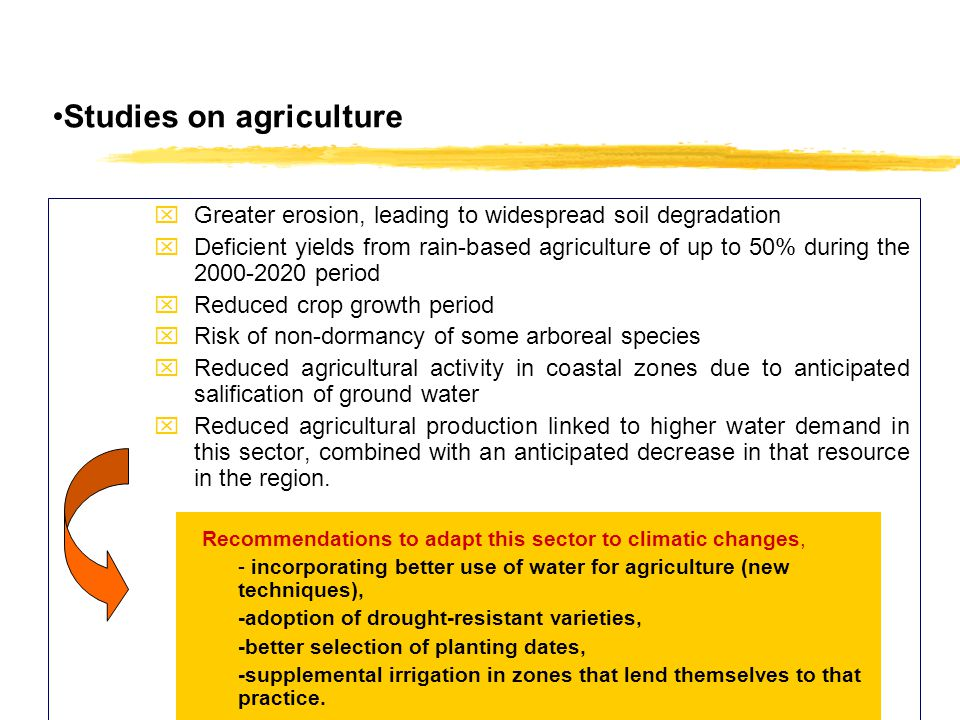 Studies on agriculture xGreater erosion, leading to widespread soil degradation xDeficient yields from rain-based agriculture of up to 50% during the 2000-2020 period xReduced crop growth period xRisk of non-dormancy of some arboreal species xReduced agricultural activity in coastal zones due to anticipated salification of ground water xReduced agricultural production linked to higher water demand in this sector, combined with an anticipated decrease in that resource in the region.