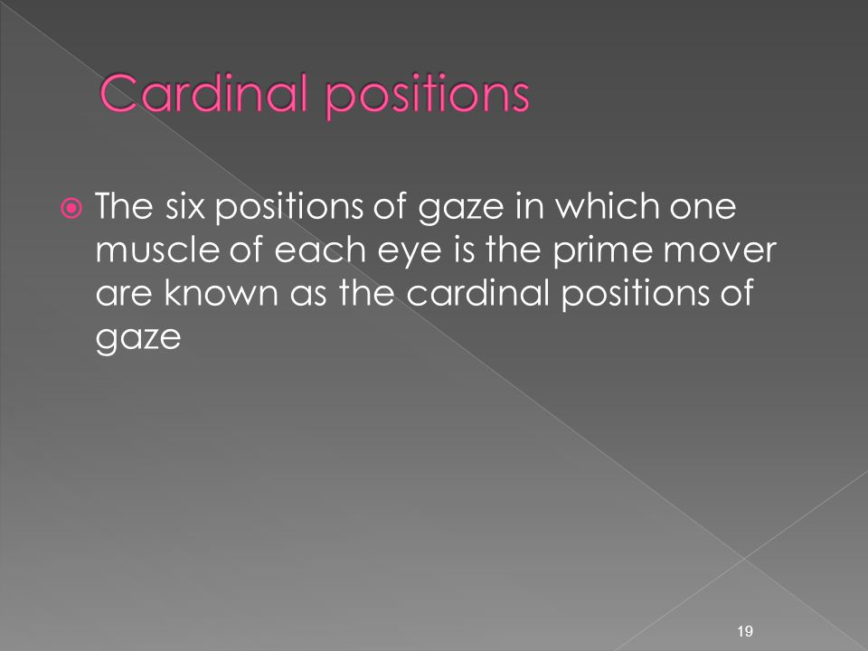  The six positions of gaze in which one muscle of each eye is the prime mover are known as the cardinal positions of gaze 19