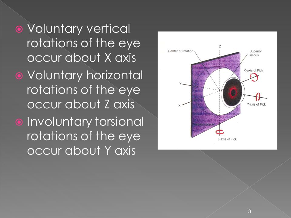  Voluntary vertical rotations of the eye occur about X axis  Voluntary horizontal rotations of the eye occur about Z axis  Involuntary torsional rotations of the eye occur about Y axis 3