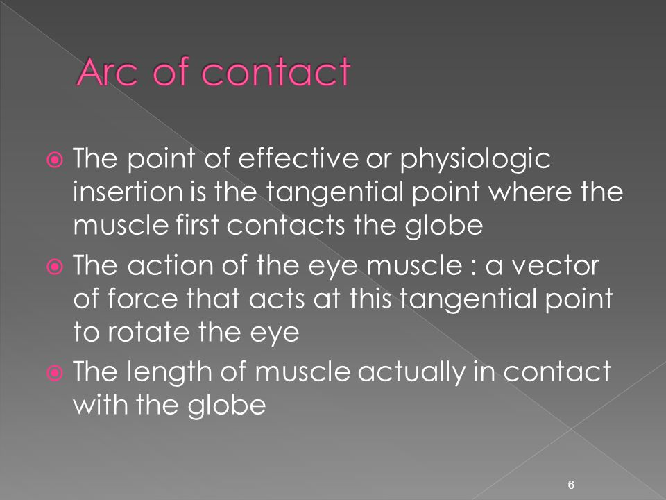  The point of effective or physiologic insertion is the tangential point where the muscle first contacts the globe  The action of the eye muscle : a vector of force that acts at this tangential point to rotate the eye  The length of muscle actually in contact with the globe 6