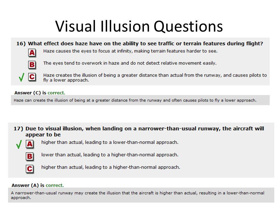 Visual Illusion Questions