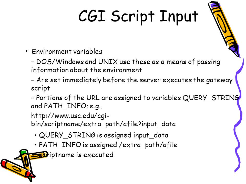 CGI Script Input Environment variables – DOS/Windows and UNIX use these as a means of passing information about the environment – Are set immediately before the server executes the gateway script – Portions of the URL are assigned to variables QUERY_STRING and PATH_INFO; e.g., http://www.usc.edu/cgi- bin/scriptname/extra_path/afile input_data QUERY_STRING is assigned input_data PATH_INFO is assigned /extra_path/afile scriptname is executed
