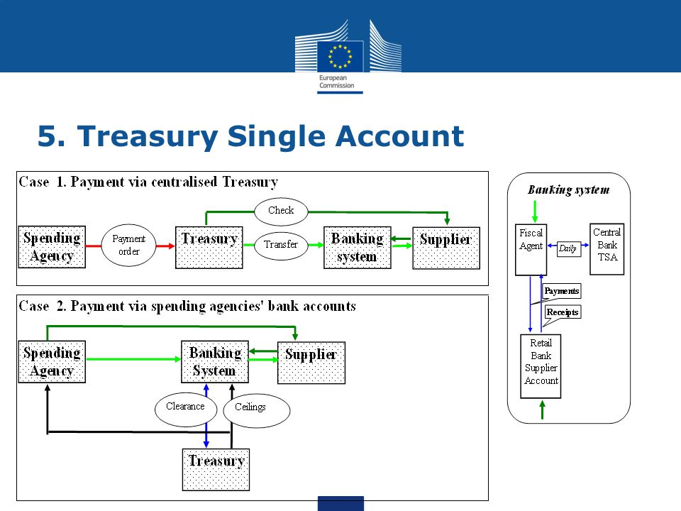 5. Treasury Single Account