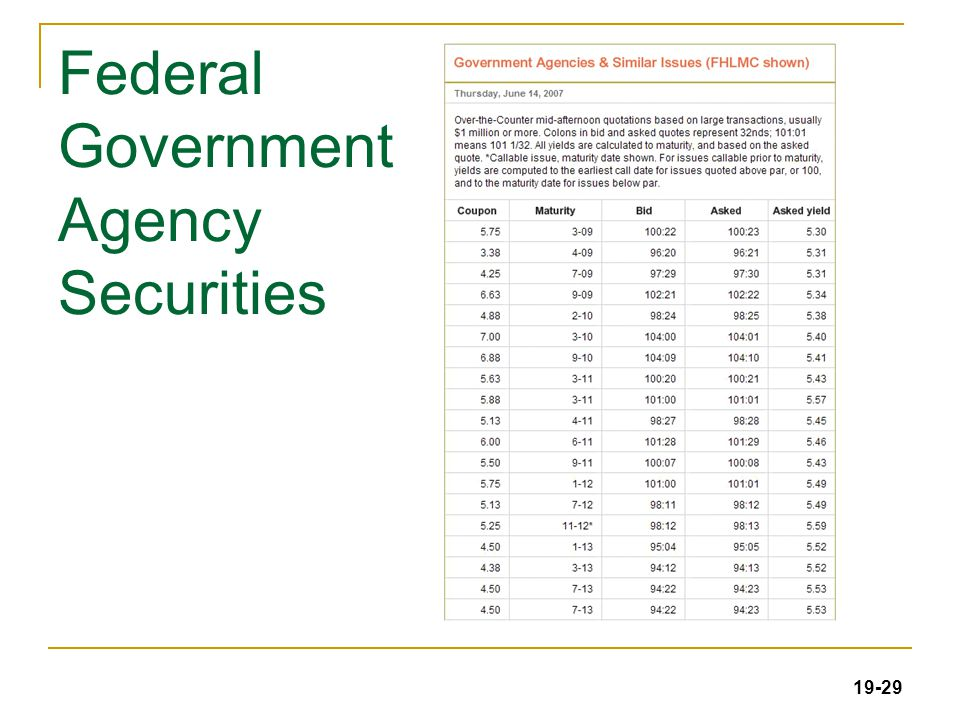 19-29 Federal Government Agency Securities