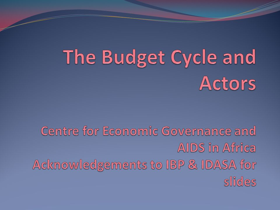 22 Plenary exercise Now that we have covered all the budget cycle phases, which stage of the budget process would you try to intervene in if you were advocating about the following & why.