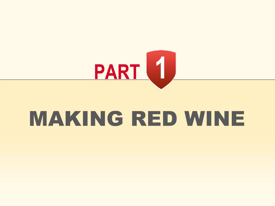MAKING RED WINE 1 PART