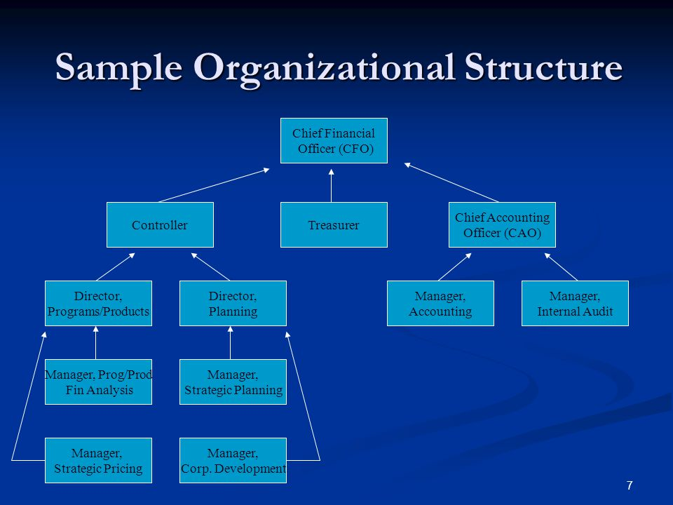 7 Sample Organizational Structure Chief Financial Officer (CFO) Controller Director, Programs/Products Chief Accounting Officer (CAO) Manager, Corp.