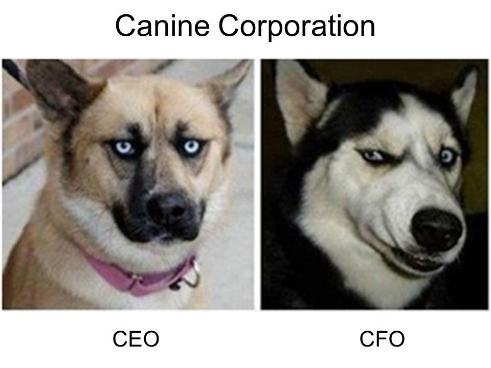 Canine Corporation CEO CFO