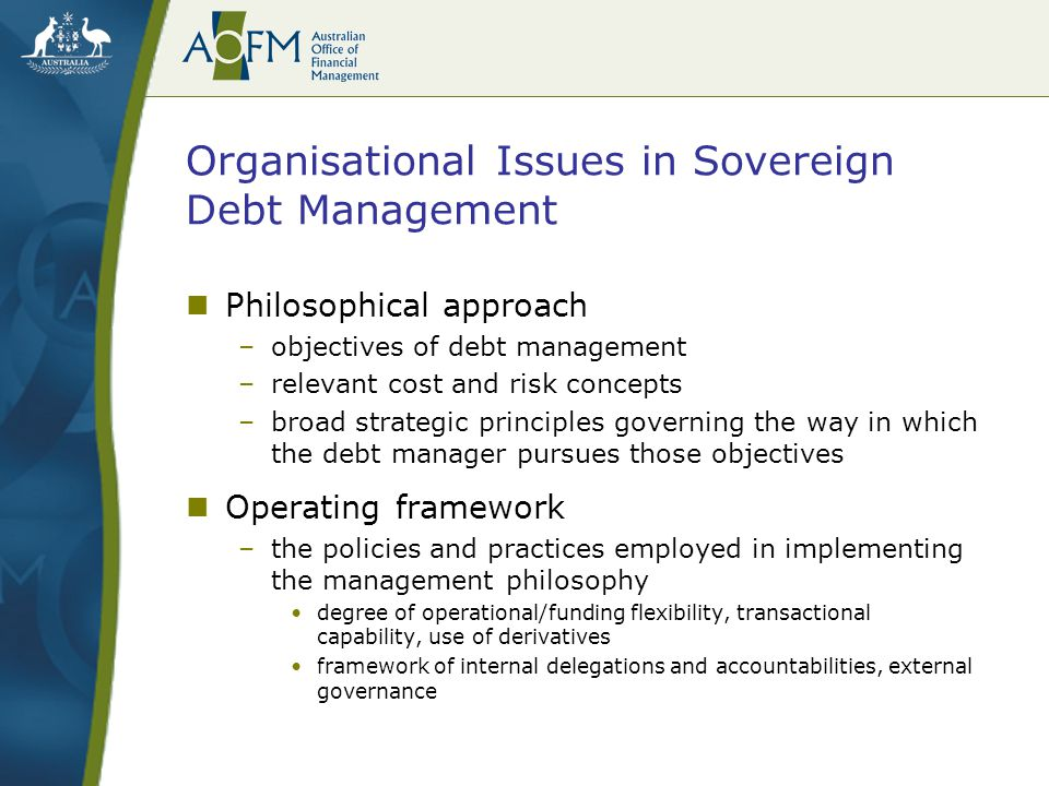 Organisational Issues in Sovereign Debt Management Measurement framework –governs not only how risk is measured and monitored –but also how the debt manager's performance is measured against those objectives Organisational structure –establishes the resource, management and skills base appropriate to implementing the overall debt management strategy
