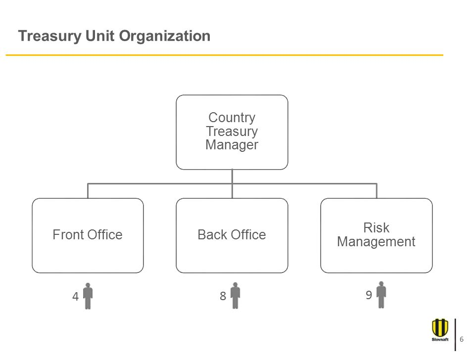 Treasury Unit Organization Country Treasury Manager Front OfficeBack Office Risk Management 489 6