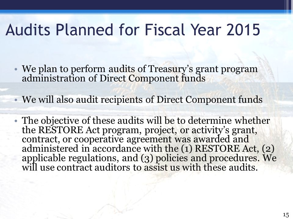 Audits Planned for Fiscal Year 2015 We plan to perform audits of Treasury's grant program administration of Direct Component funds We will also audit