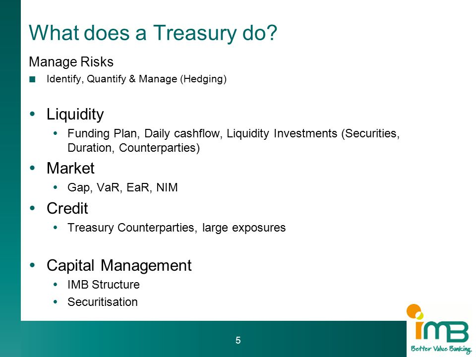 What does a Treasury do.