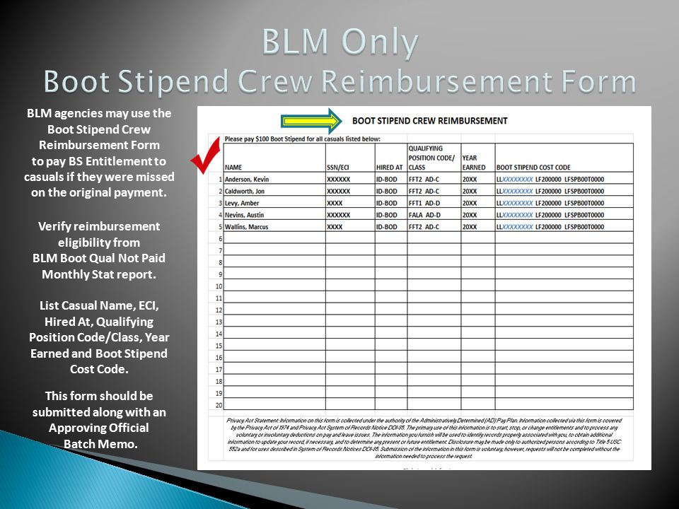 BLM agencies may use the Boot Stipend Crew Reimbursement Form to pay BS Entitlement to casuals if they were missed on the original payment. List Casua
