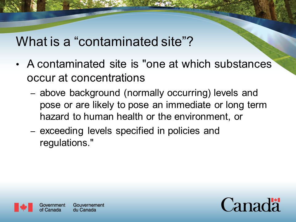 What is a contaminated site .