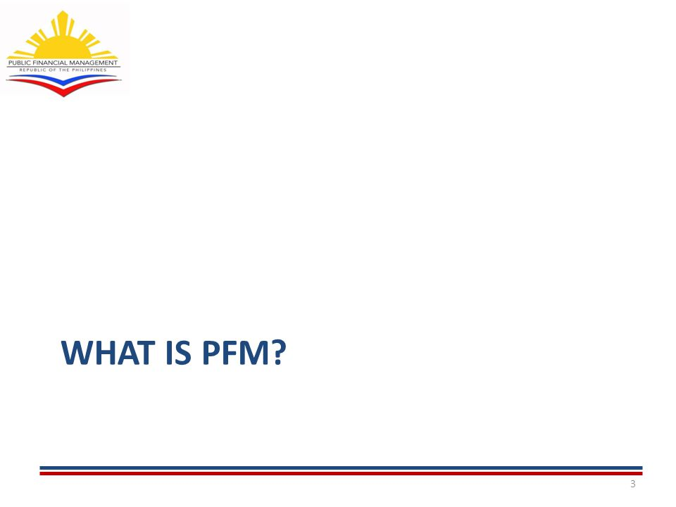 WHAT IS PFM 3