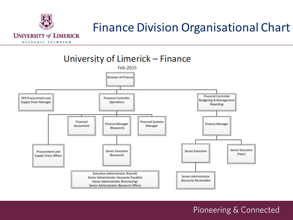Finance Division Organisational Chart