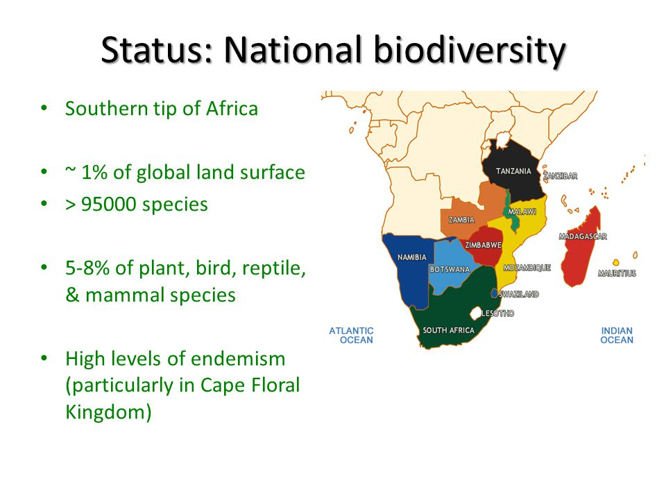 Projected Loss of Service Value Due to Transformation of Natural Assets in KZN TOTAL SERVICES PROVIDED BY BIODIVERSITY 2011 R 149 billion 2021 R 132 billion 2031 R 89 billion If current rate of loss continues Treasury will need to find an additional R17 billion to compensate for the loss of essential services biodiversity is providing for free