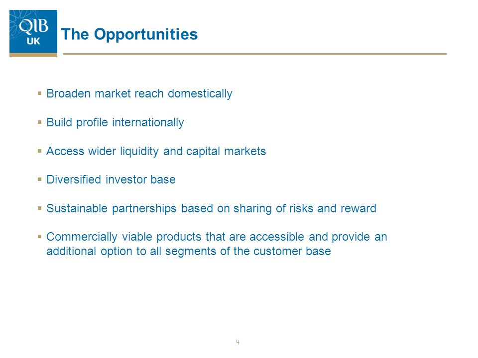 The Opportunities  Broaden market reach domestically  Build profile internationally  Access wider liquidity and capital markets  Diversified inves