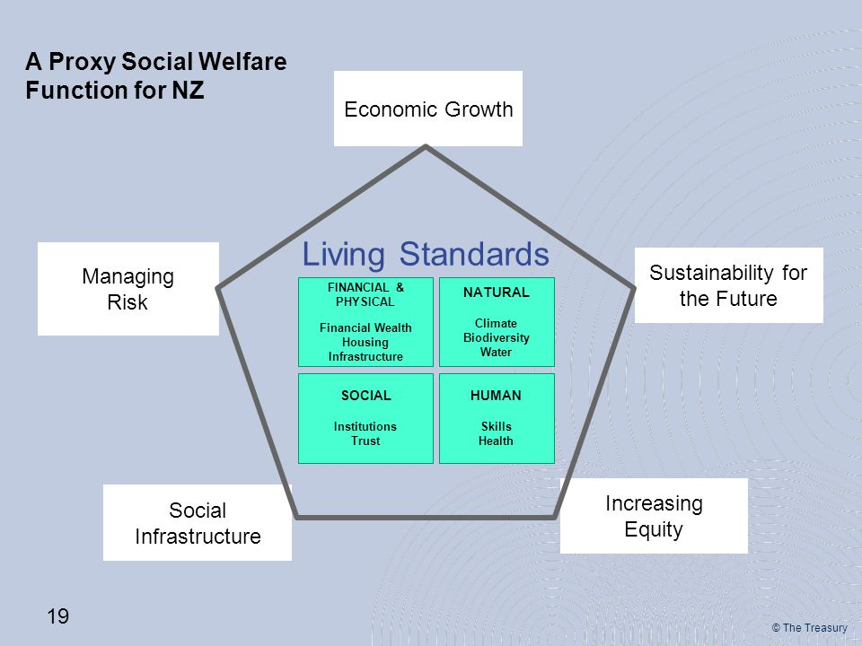 © The Treasury Increasing Equity Social Infrastructure Sustainability for the Future Economic Growth Managing Risk FINANCIAL & PHYSICAL Financial Wealth Housing Infrastructure NATURAL Climate Biodiversity Water SOCIAL Institutions Trust HUMAN Skills Health Living Standards 19 A Proxy Social Welfare Function for NZ