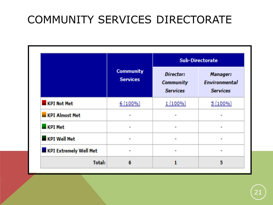 COMMUNITY SERVICES DIRECTORATE 21